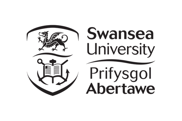 Academia 3 Swansea University - About